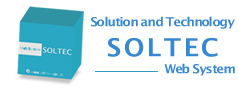 Solution and Technology SOLTEC Web System